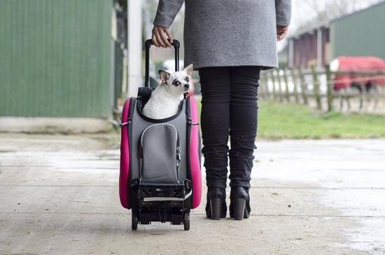 Plaatje van kleine hond in de Innopet 5 in 1 rolbare koffer