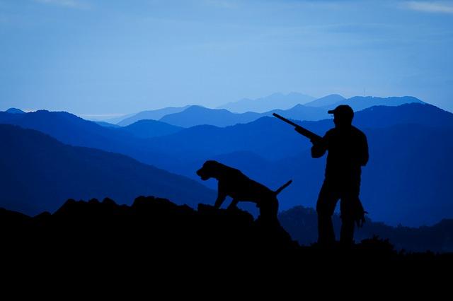 Afbeelding van een hond met een man