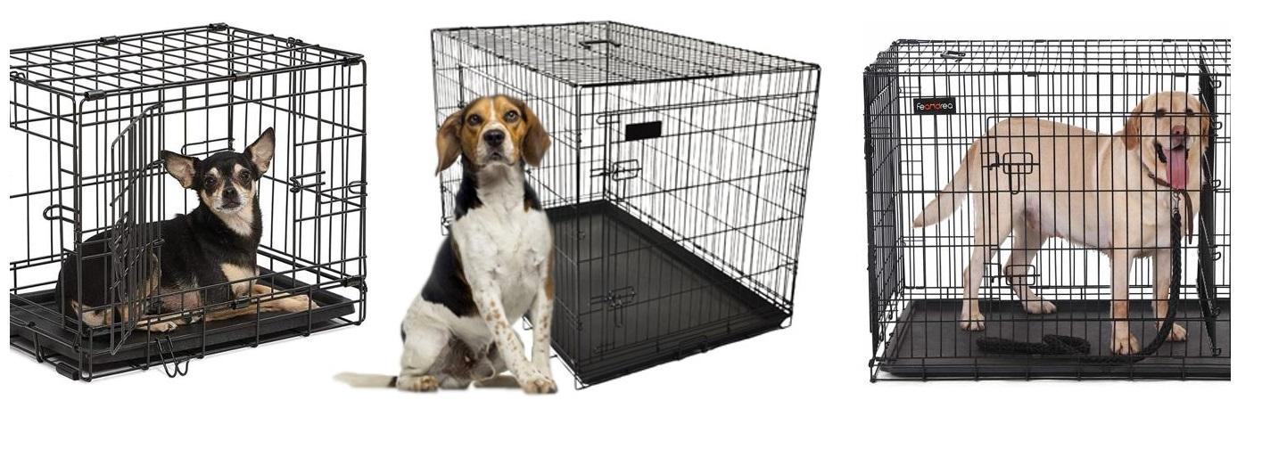 5 Tips Om de Juiste Maten voor een Hondenbench te Kiezen