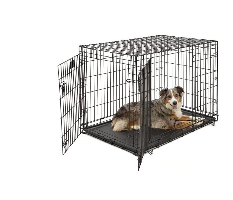Afbeelding van hond in hondenbench