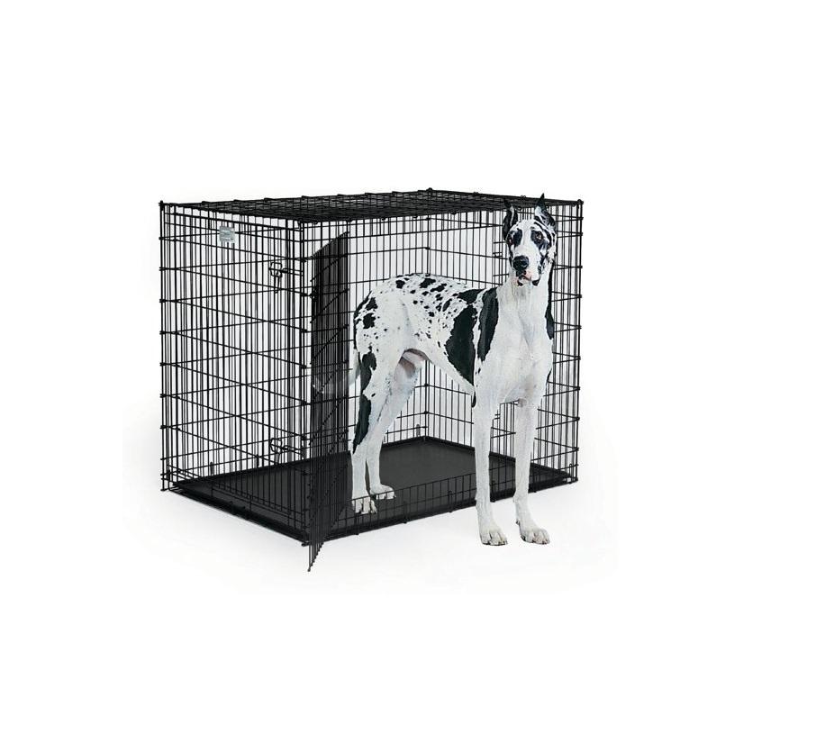 Afbeelding van grote hond in een XXL hondenbench