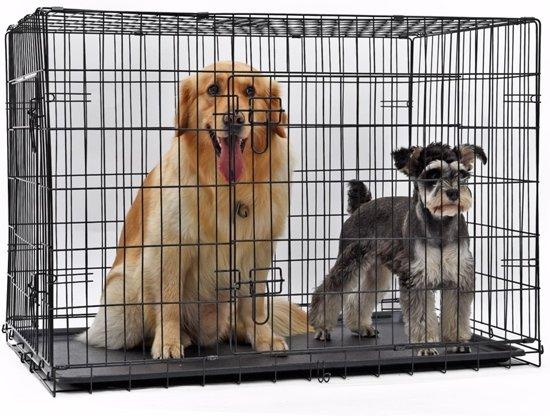 Afbeelding van de Grote Petstore Hondenbench met honden erin