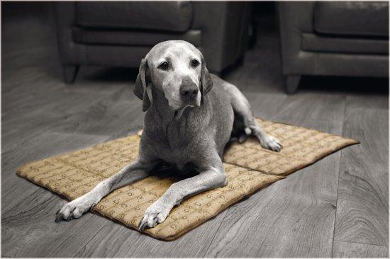 Afbeelding van de beeztees Quick Koelmat met een hond erop
