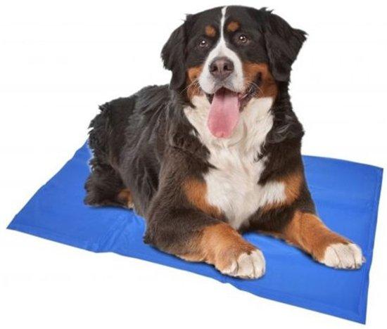 Afbeelding van de Duvo+ koelmat met een XL hond erop