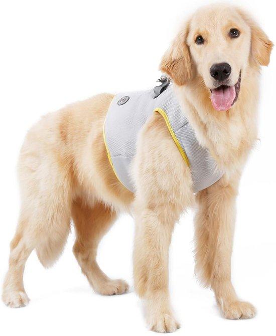 Afbeelding van een verkoelend hondenharnas met hond