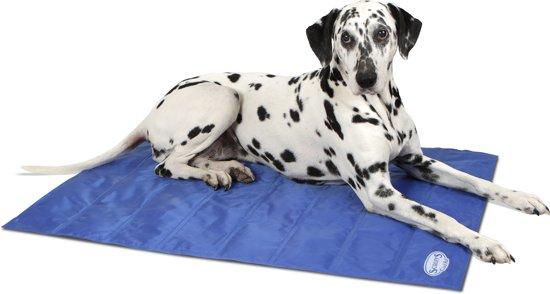 Afbeelding van een koelmat die je hond verkoelt