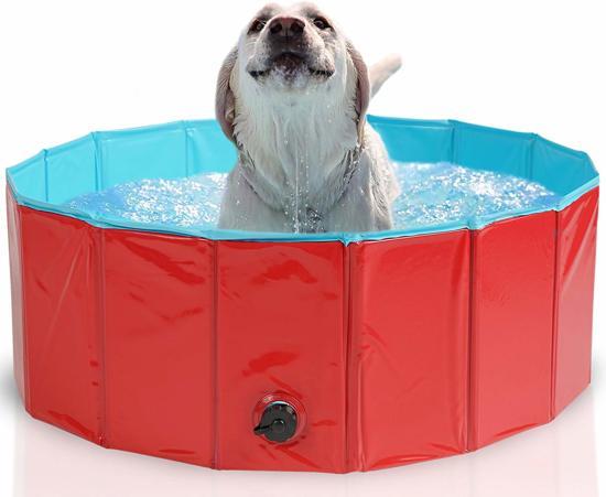 Afbeelding van een hond in een zwembad voor verkoeling