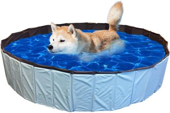 Afbeelding van het huisdiersuper hondenzwembad met hond erin