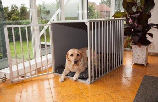 Afbeelding van de kamerkennel M3 DK met liggende hond