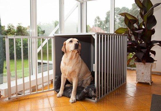 Afbeelding van de kamerkennel M3 DK met hond