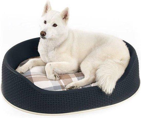 Afbeelding van de Curver Hondenmand met grote hond erin