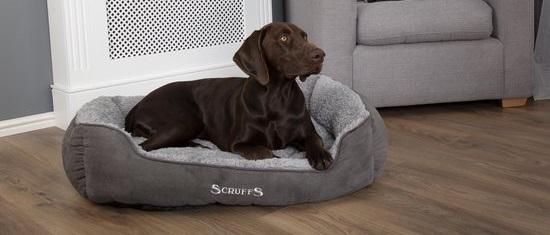 Top 5: Wat is de meest Luxe Hondenmand?
