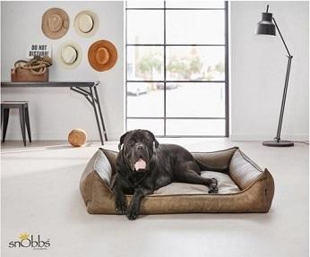 Afbeelding van de SnObbs Buffalo Cowboys hondenmand met hond erin