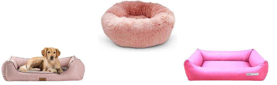 Wat is de Mooiste Roze Hondenmand in 2021?