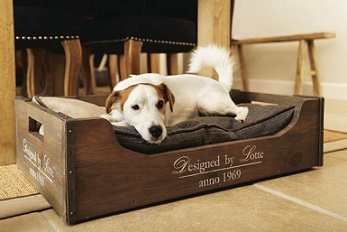 Afbeelding van hond in houten hondenmand