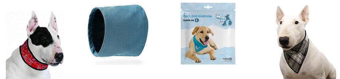 Wat is de Beste Koelband voor je Hond?