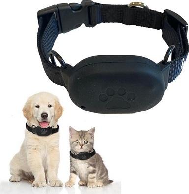 Afbeelding van de Membeli GPS Tracker zonder abonnement met een hond en kat