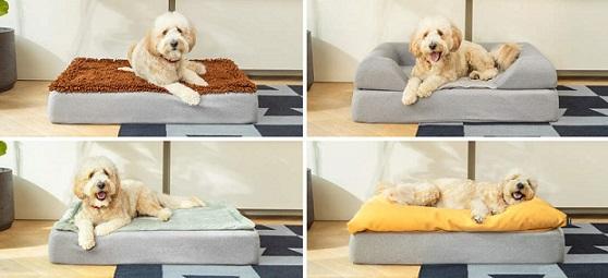 Afbeelding van vier hondenmanden met een hond erin