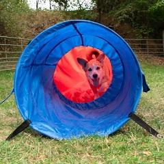 Afbeelding van de Zooplus tunnelzak met hond