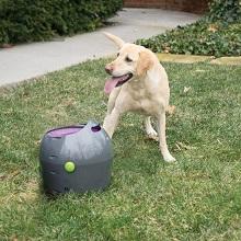 Afbeelding van de PetSafe automatishe ballenwerper