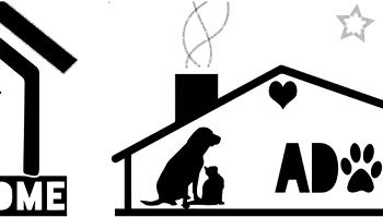 Afbeelding van goede doelen voor honden