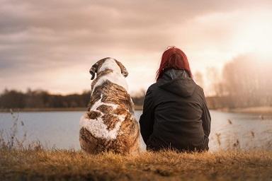 Afbeelding van vrouw met hond