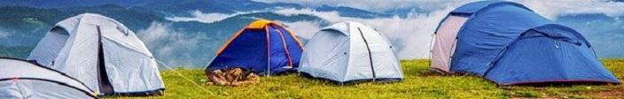 De Beste Hondenren voor op de Camping – Top 3